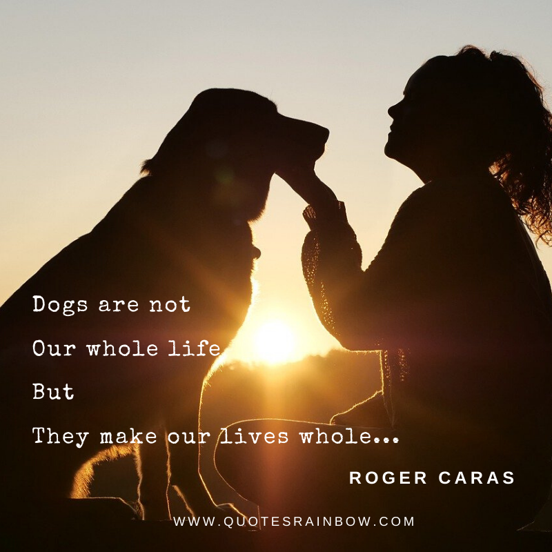 Dogs make our life whole quotes