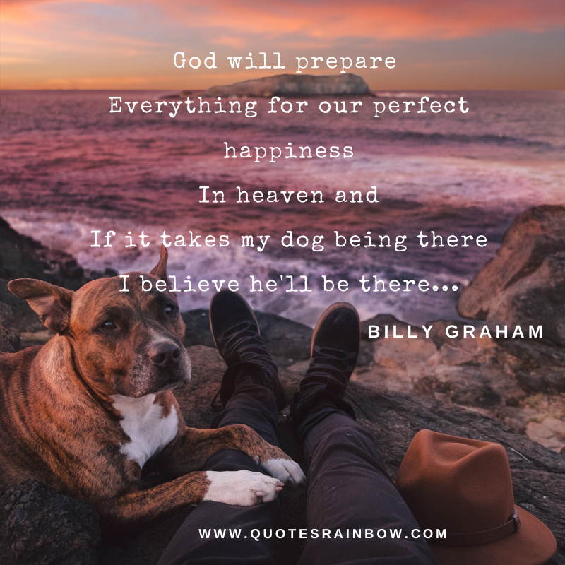 Perfect happiness in heaven quotes