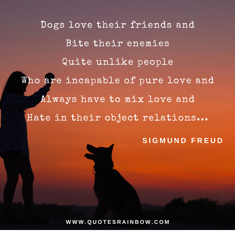 Dog love their friends quotes