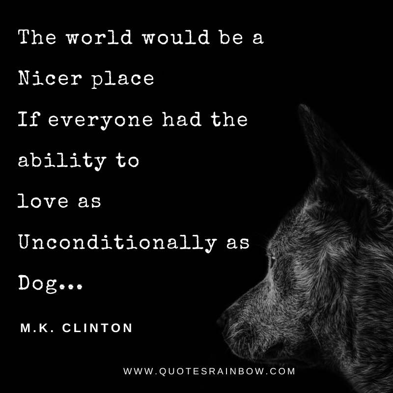 Love as unconditionally as dog quotes