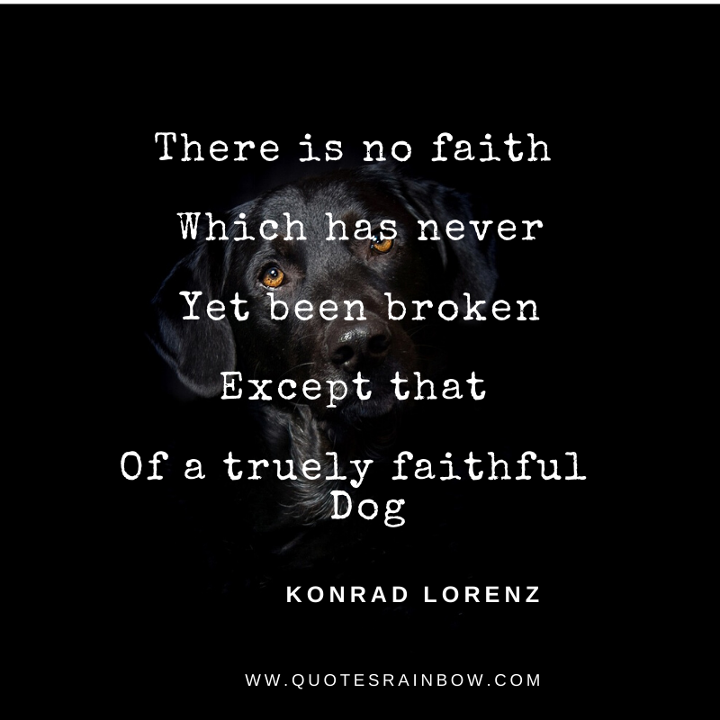 Never broken faith quotes