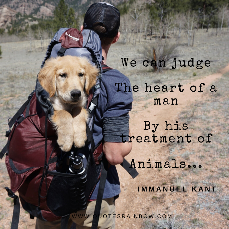Judge heart of a man quotes